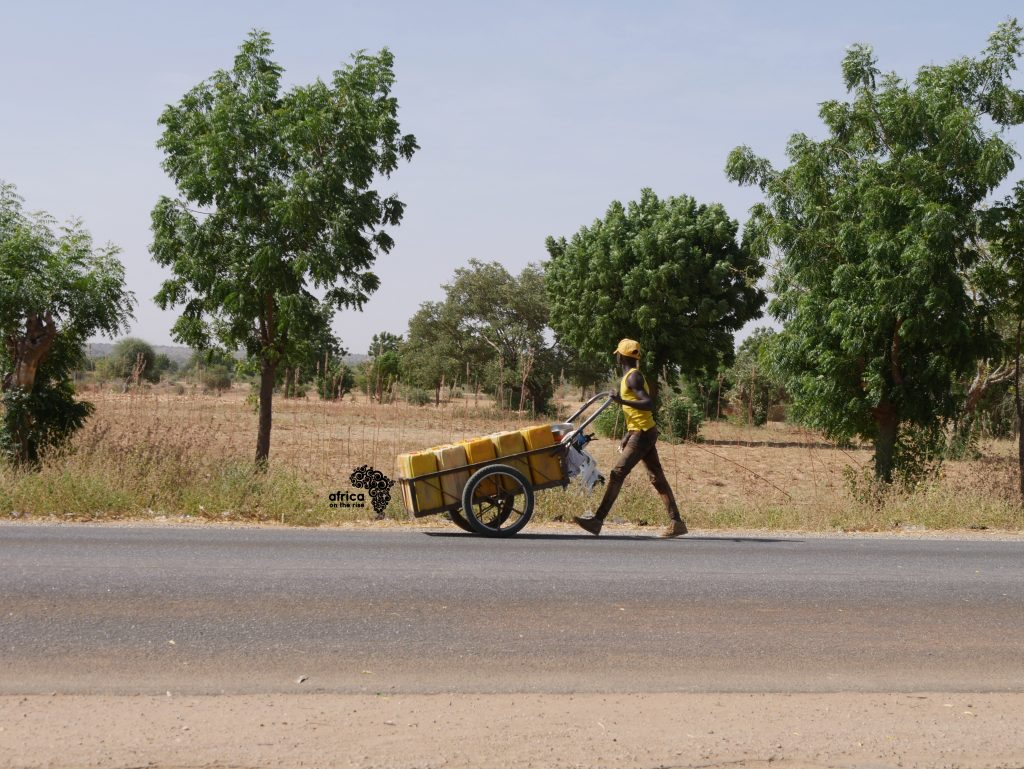 Skies and Sights of Katsina_Boy Pushing Cart - [Photo Credit - Iweka Kingsley]