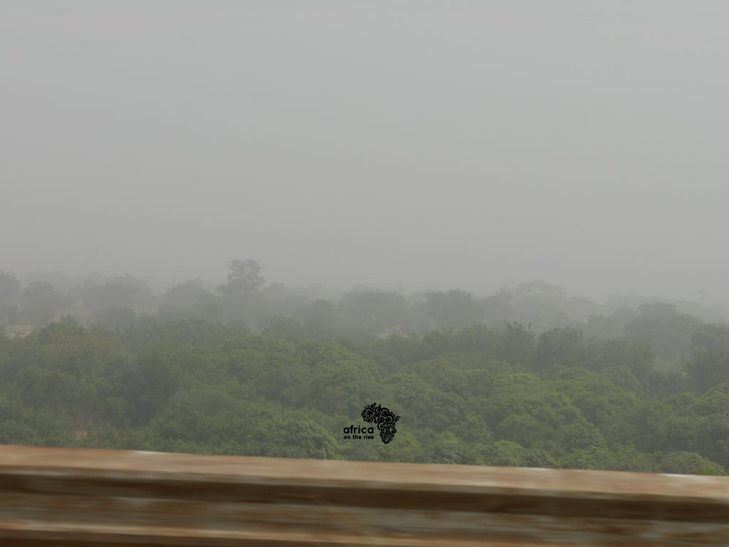 Skies and Sights of Katsina_Lush Green Vegetation - [Photo Credit - Iweka Kingsley]