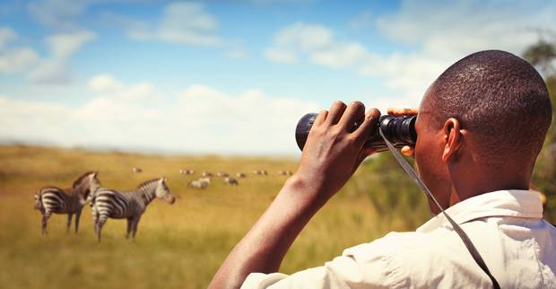A park ranger watching zebras in Akagera national park. Photo / Getty Images
